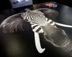 SuperWide Digital used its new EFI VUTEk GS3250LX Pro to print this dramatic floor graphic on Soyang G-Floor Clear Coin